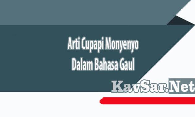 Arti Cupapi Monyenyo Dalam Bahasa Gaul